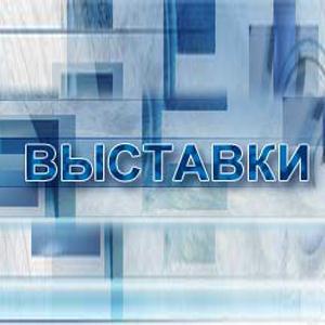 Выставки Сыктывкара